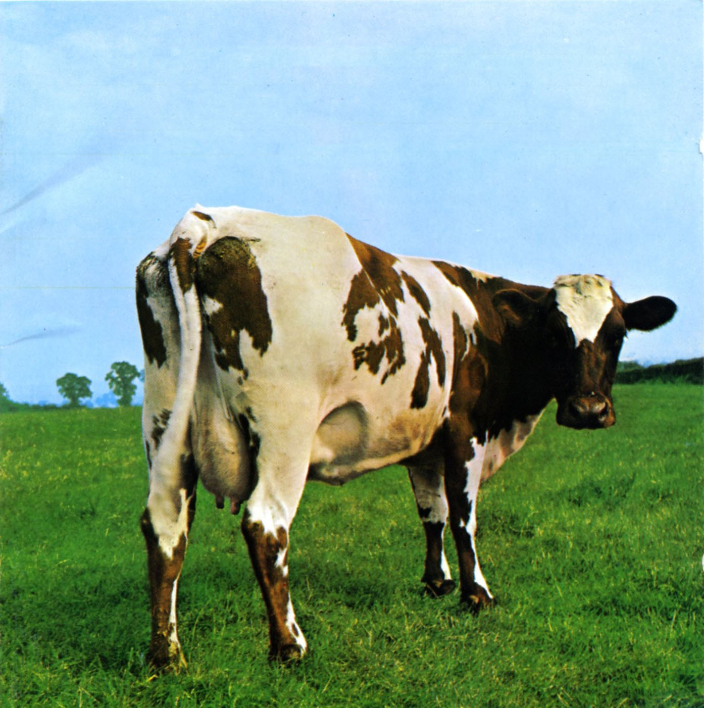 jacquette Atom Heart Mother